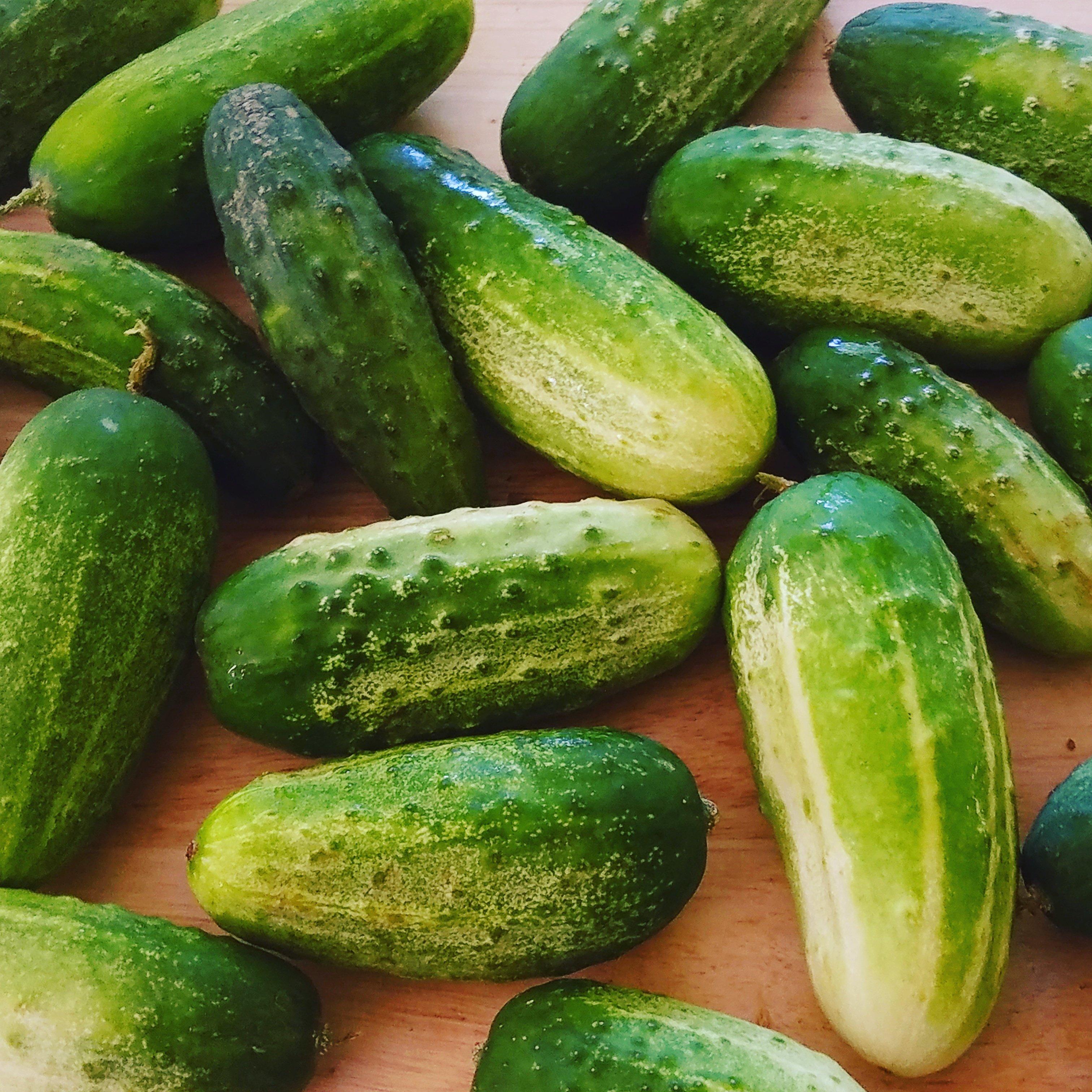 cucumbers from my husbands garden
