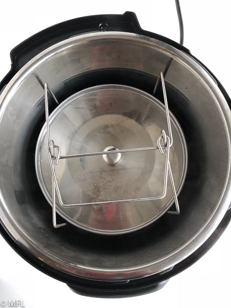 stainless steel insert in instant pot