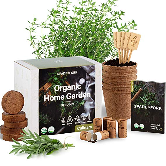 Indoor Herb Garden Starter Kit - Certified 100% USDA Organic Non GMO Basil, Cilantro, Parsley, Sage, Thyme