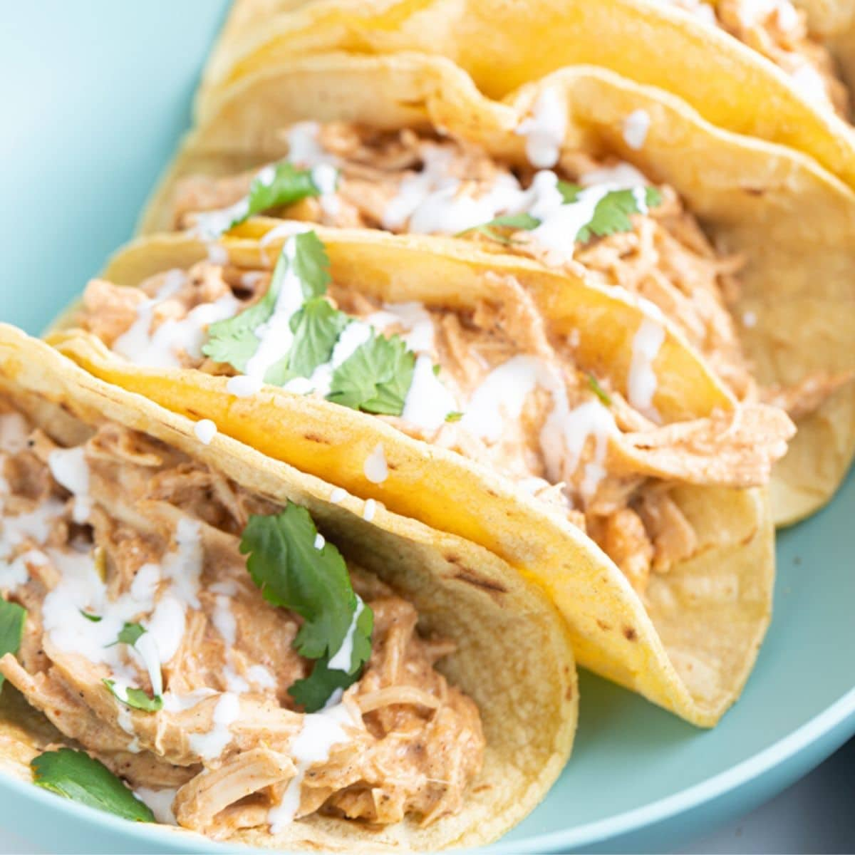Creamy Instant Pot Chicken Tacos My Forking Life