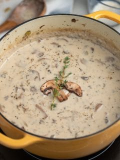 Cream of mushroom soup in a dutch oven.