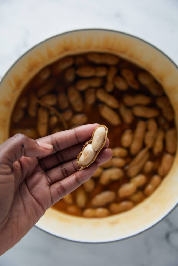 A hand holding a boiled peanut.